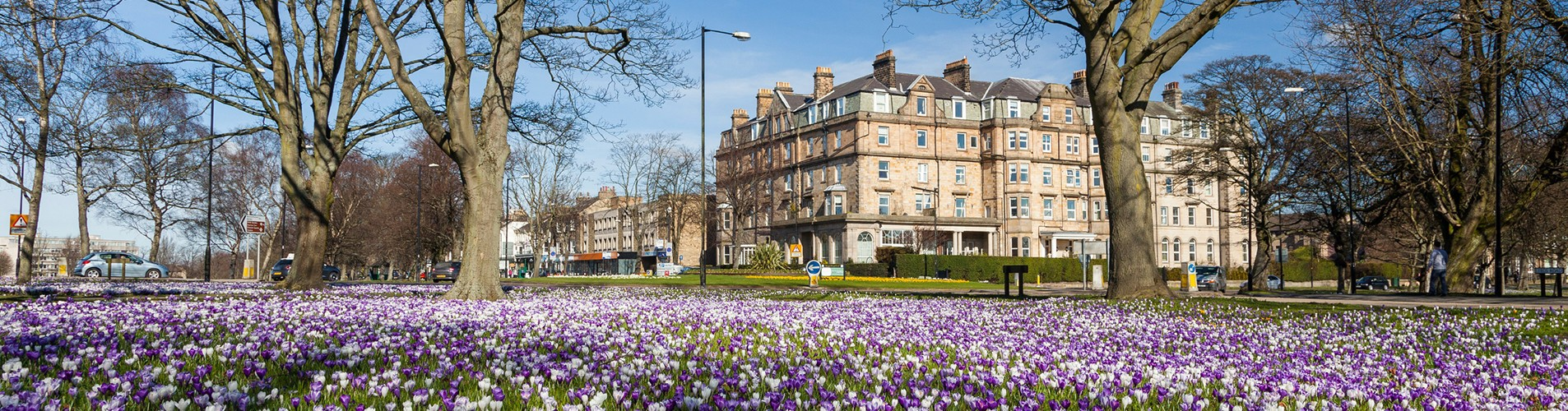 living in harrogate – main