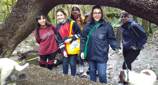Boarders day trip to Ingleton Waterfall Trail